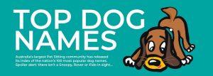 Top Dog Names Summary