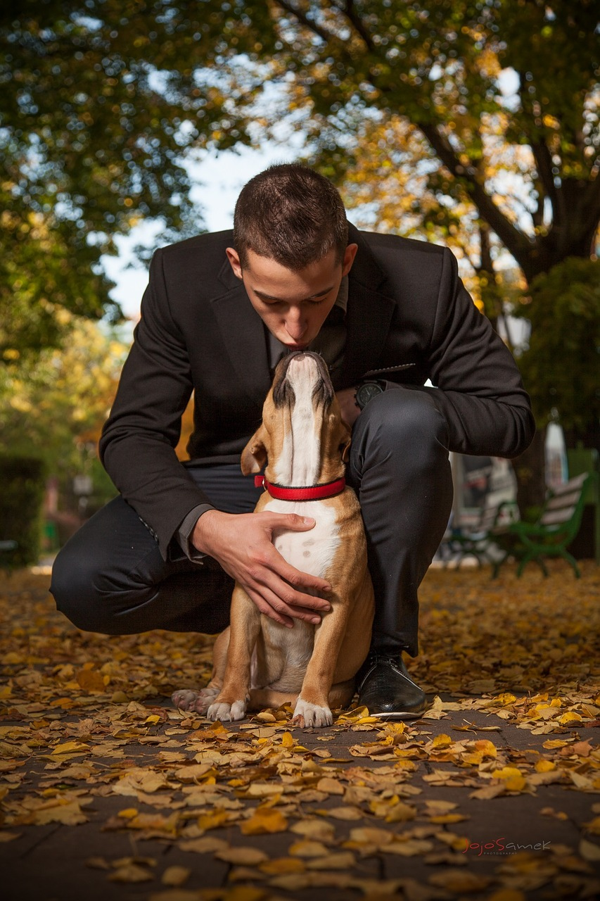 Does a Dog Have the Same Personality as Their Owner?