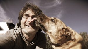 Should your dog lick your face?