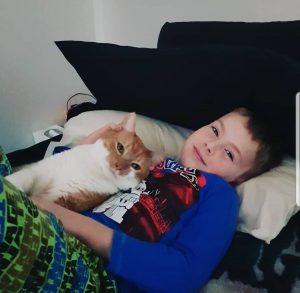 Meet Ryder, WA's Most Huggable Cat
