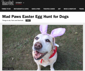 Easter Egg Hunt for Dogs Media Press