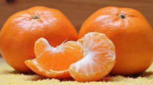 Can My Dog Eat Mandarins?