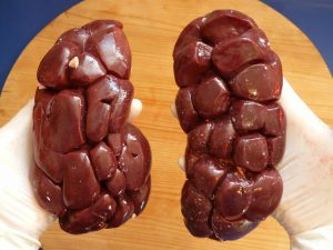 Benefits of Offal for Dogs