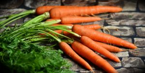 What are the benefits of carrots for dogs?