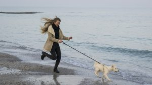 Socially-Distanced Activities You Can Do with Your Dog