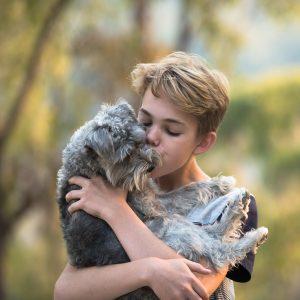 Do Dogs Like to be Hugged